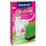 Vitakraft Trava Za Mačke 120g